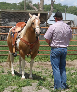 hyer-ranch-history